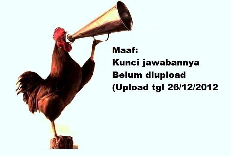 Ayam Pintar 1